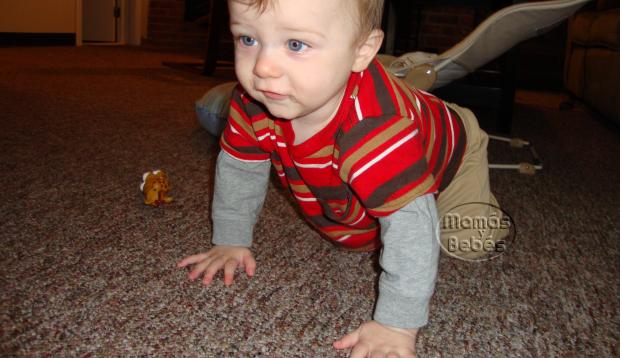 el gateo en bebes