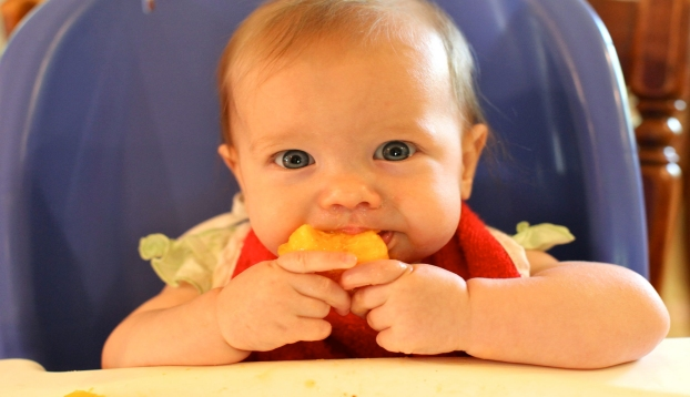 BLW Baby led weaning o alimentación autorregulada